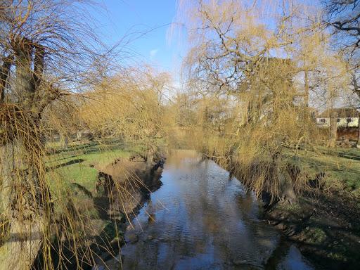 CIMG2344 Beverley Brook in Richmond Park