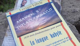Œuvre de Karim Chikh, animateur à Radio Soummam: Un dictionnaire de lexique kabyle sur le marché