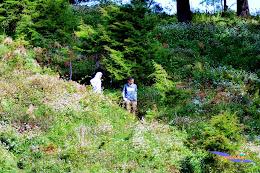 ngebolang gunung prau 13-15-juni-2014 nik 2 069