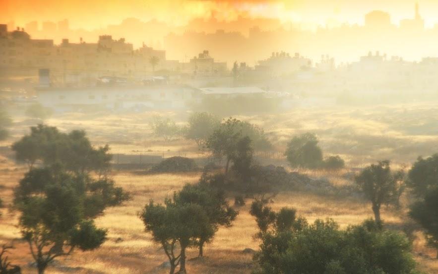"""Фотоконкурс """"Моё открытие Израиля"""": кто победил? DSC_3579"""