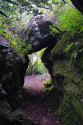 Sentier du bras des Étangs.