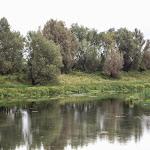 20140817_Fishing_Pugachivka_016.jpg