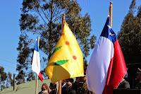 Desfile Pangue 2014
