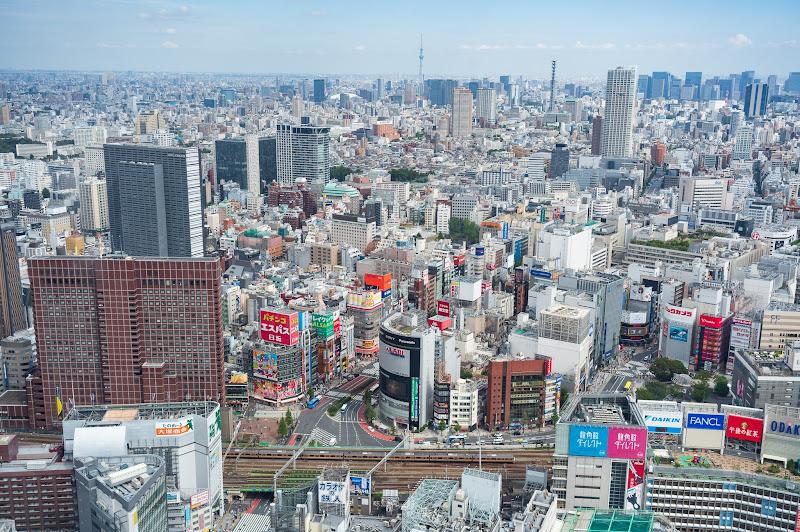 190928 損保ジャパン日本興亜美術館から見た新宿
