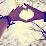 Maya Archut's profile photo