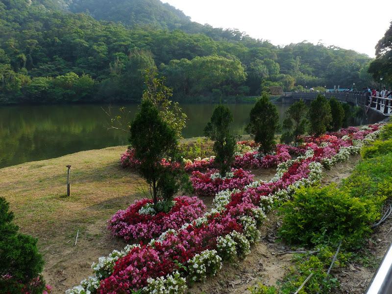 TAIWAN.Dans la région de MIAOLI - P1090435.JPG