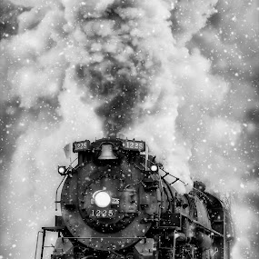 Polar Express to the North Pole by Tammy Scott - Transportation Trains ( steam train, locomotive, historical, steam, trains, transportation )