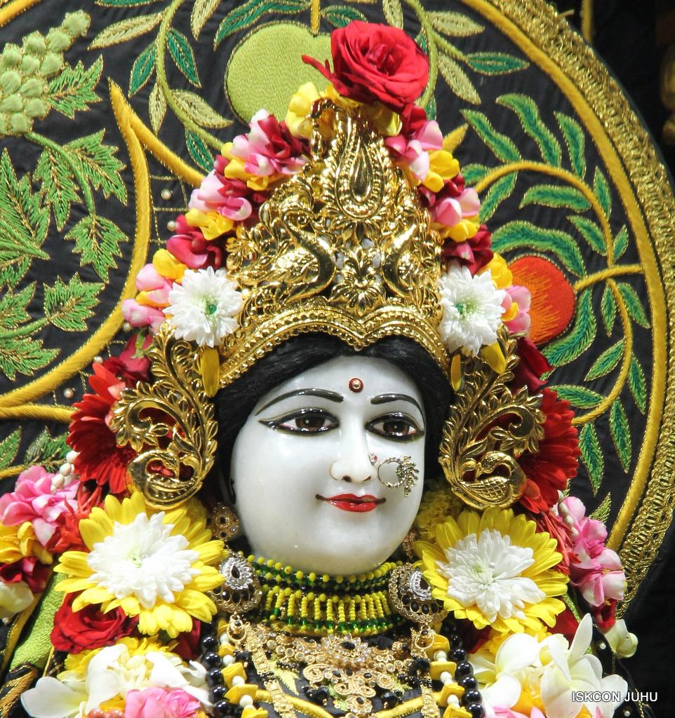 ISKCON Juhu Sringar Deity Darshan on 19th Nov 2016 (11)