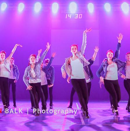 Han Balk Voorster Dansdag 2016-3703-2.jpg
