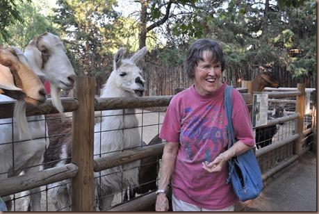 08-17-16 Boise Zoo 26