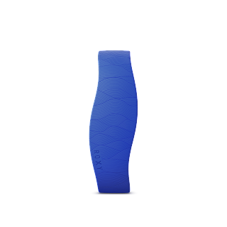 SmartBand with Roxy Product PNG 1.png