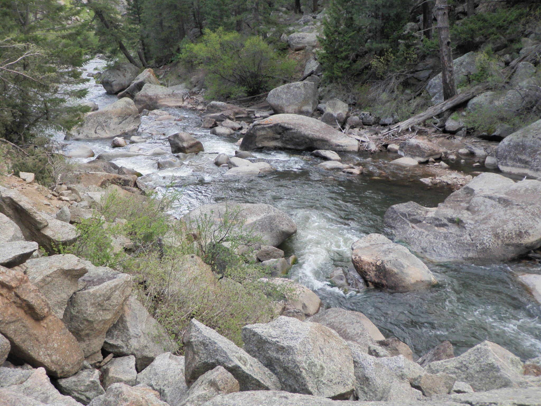 South boulder creek 05 25 2016 dave weller 39 s fly for Boulder creek fishing
