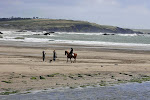 Walking and Horse Riding on Warren Beach.JPG