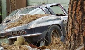 Abandoned Corvettte C2