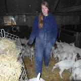 Bevers en Welpen- Lammetjes kijken - SAM_2367.JPG