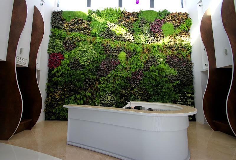 Jard n vertical de interior en castell n alicante forestal - Como hacer un jardin vertical de interior ...
