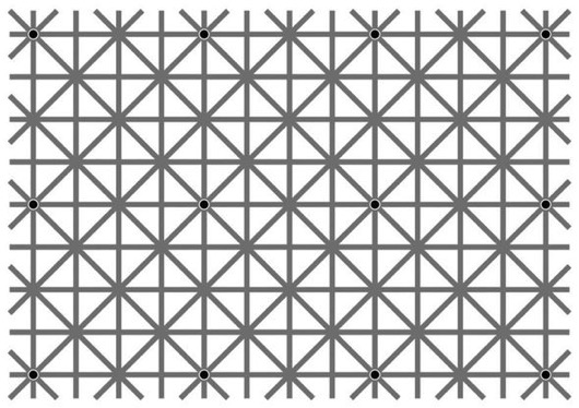 Optical Illusion Best Optical Illusion Online Black Dots 12 Black Dots Optical Illusion Optical Illusion Queensland Australia Op 651157