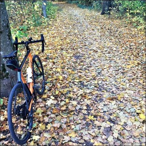Höst-Grusvägar-Zepto-Pro-Cyclocross