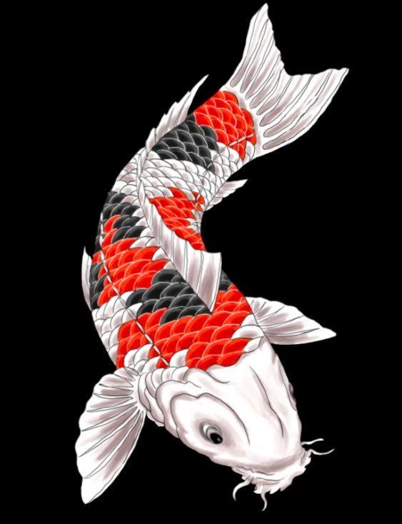Tattoo Ideas on Pinterest  Koi Half Sleeve Tattoos and Tattoo Desig…