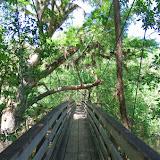 04-04-12 Hillsborough River State Park - IMGP9670.JPG