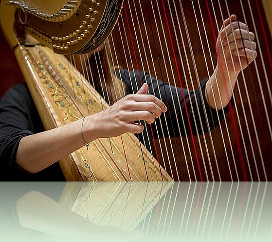 harpa6