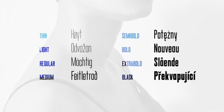 Download Marteau™ Font Family From Little Giant