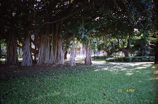 1130Memorial Gardens, The Strand