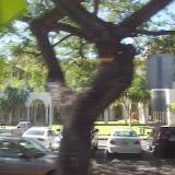 Hawaii Day 3 - 100_7044.JPG