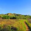 santiago-oaks-IMG_0430.jpg