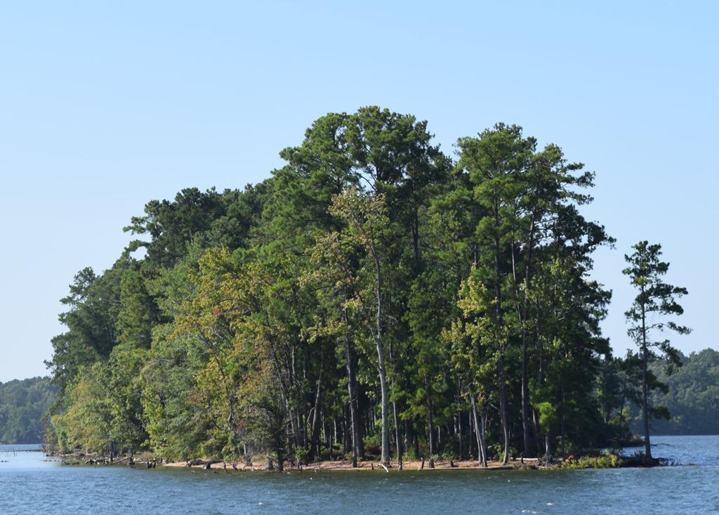 [Island+on+Lake+Murray%5B3%5D]