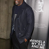 OIC - ENTSIMAGES.COM - Idris Elba at the Mandela, My Dad and Me - UK film premiere in London 7th April 2015  Photo Mobis Photos/OIC 0203 174 1069