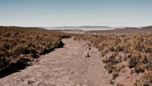 The river that once flowed through the village of Santiago K in Bolivia dried up during the drought. Two years of drought and rising temperatures dried up the river and quinoa fields, pushing a wave of migration to cities as people searched for work. Photo: Ben Walker