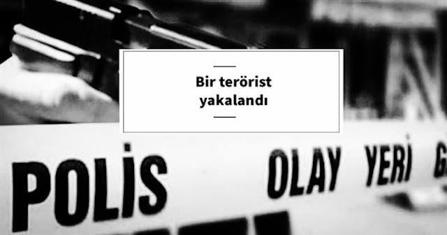 Bozova'da bir terörist yakalandı