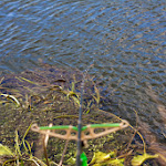 20140825_Fishing_Lysyn_038.jpg