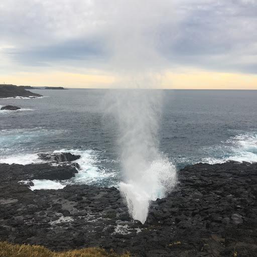 Anita Walker