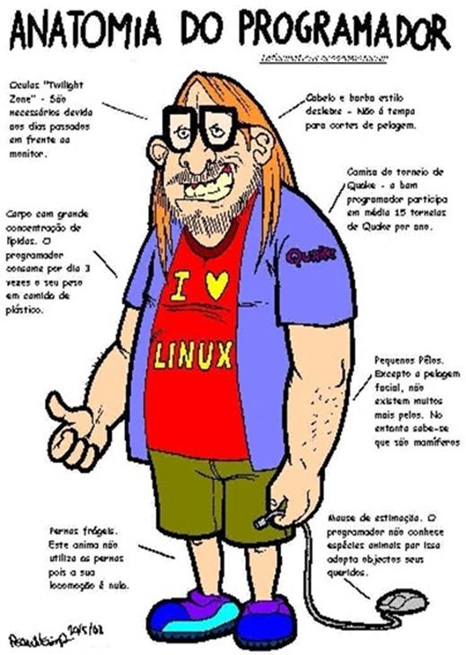 programador informático
