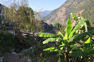 Photo: Le long de la Tamur khola à l'approche de Thiwa