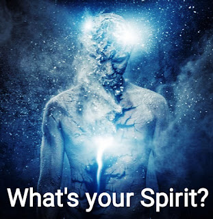 What is your Spirit?
