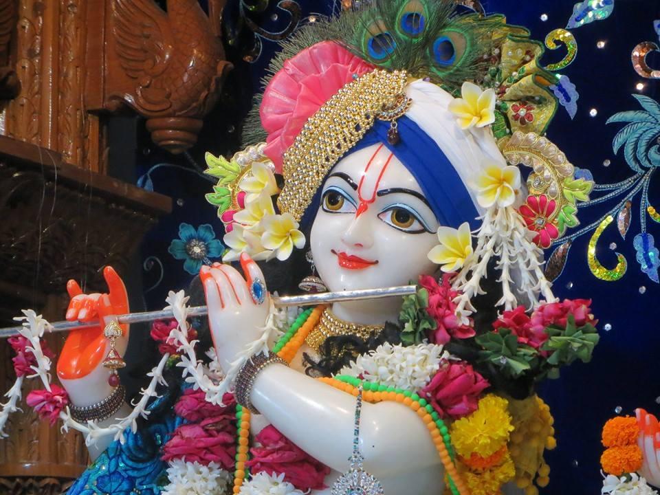 ISKCON Aravade Deity Darshan 08 Mar 2016 (1)