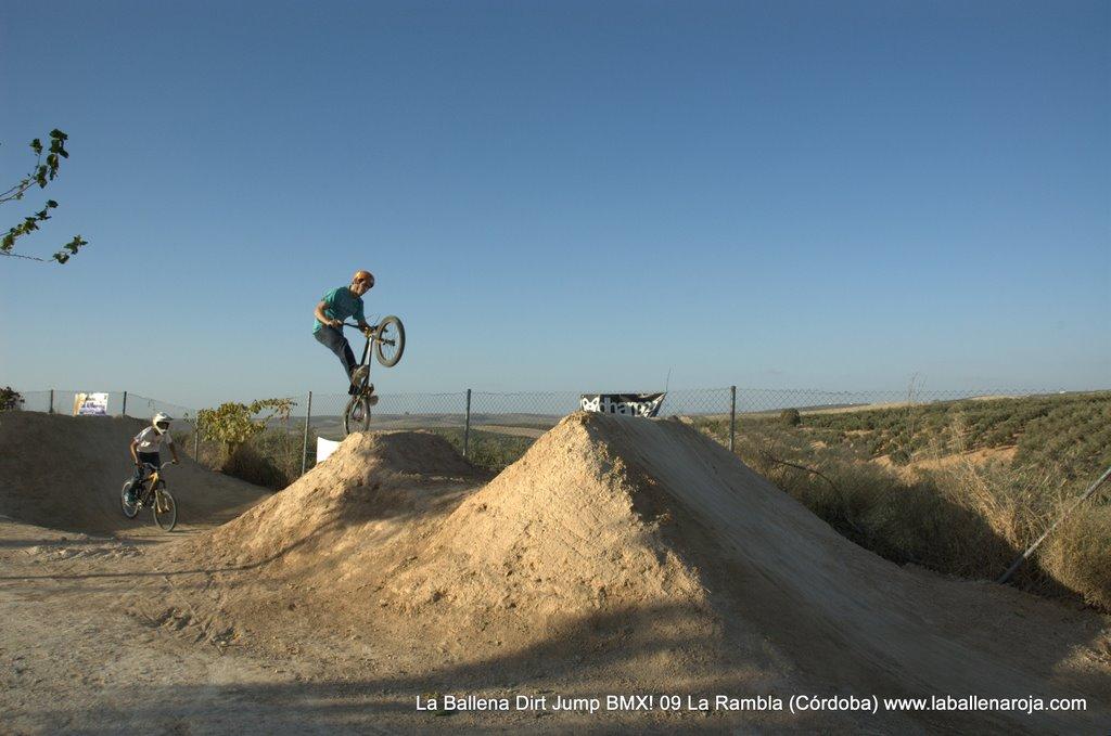 Ballena Dirt Jump BMX 2009 - BMX_09_0114.jpg
