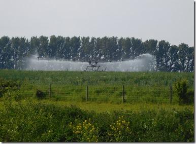 2 irrigation