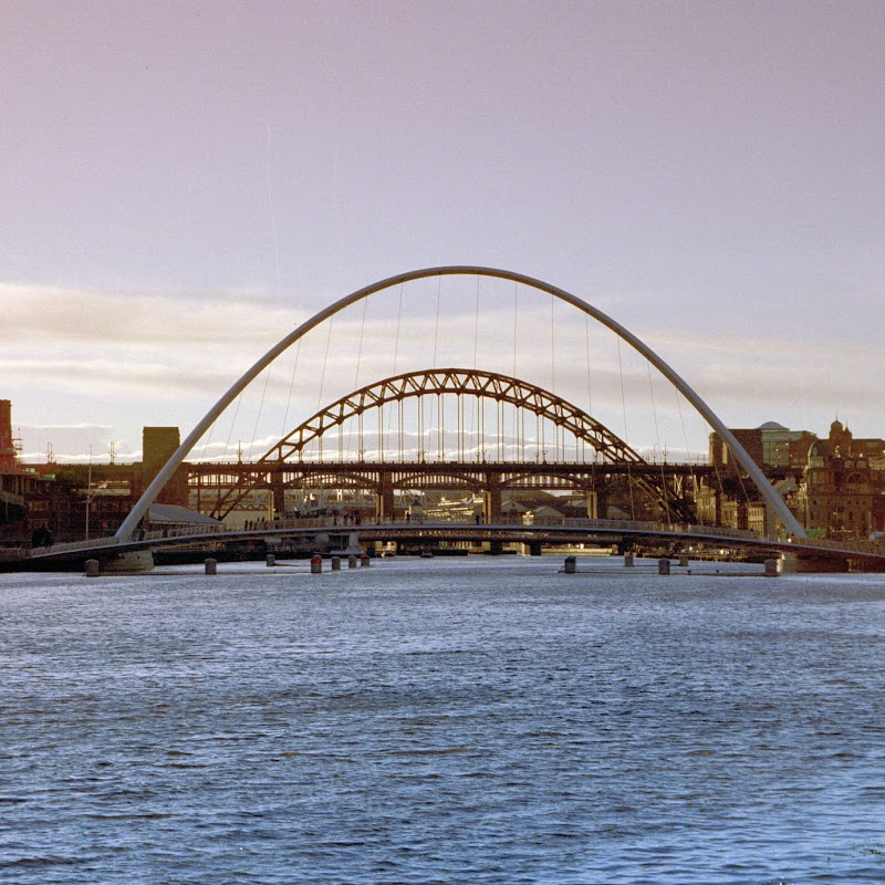 NE_07 Newcastle Eye.jpg