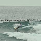 _DSC2311.thumb.jpg