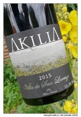 Akilia-Villa-de-San-Lorenzo-2015