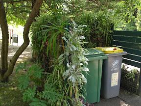 idée : abri poubelle. Parc phoenix nice mai 2006