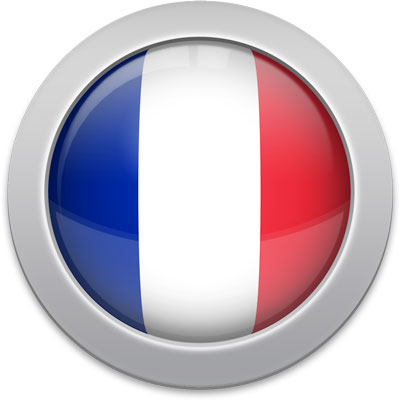 French flag icon with a silver frame