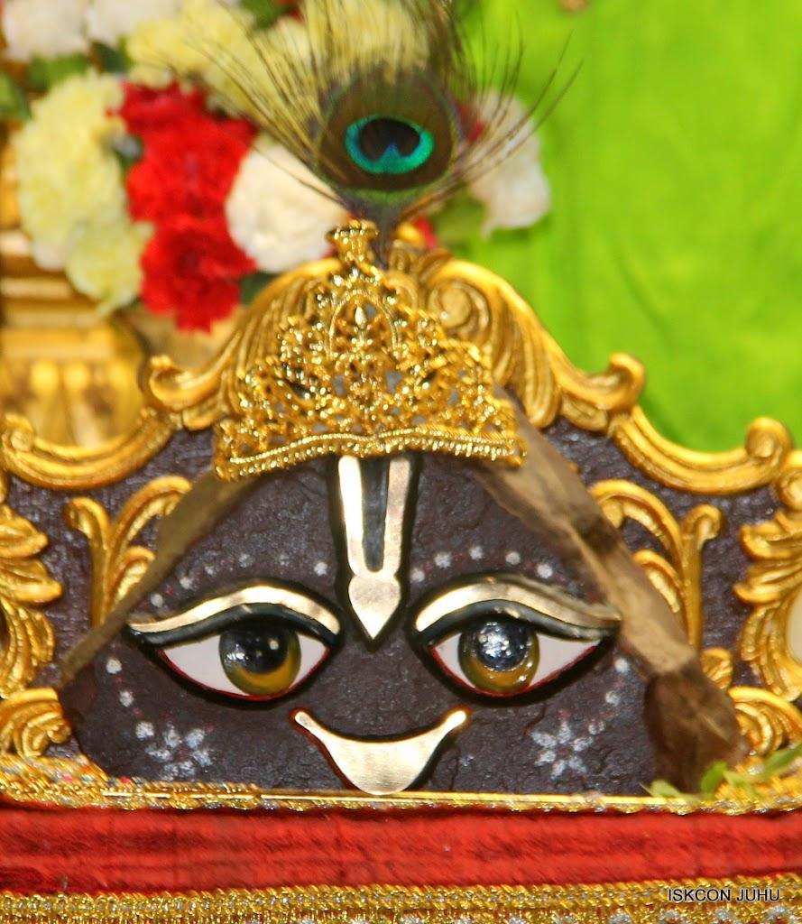 ISKCON Juhu Mangal Deity Darshan on 26th June 2016 (29)