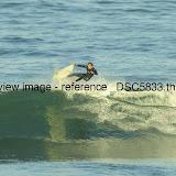 _DSC5833.thumb.jpg