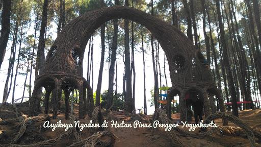 Asyiknya Ngadem di Hutan Pinus Pengger