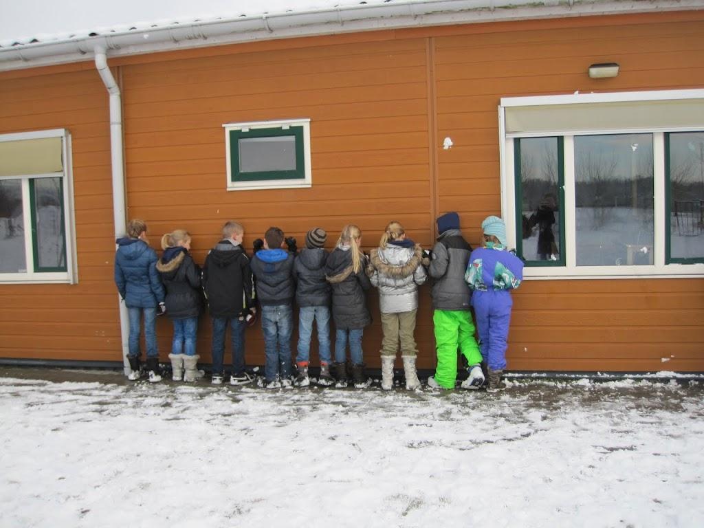 Welpen - Sneeuwpret - IMG_7578.JPG